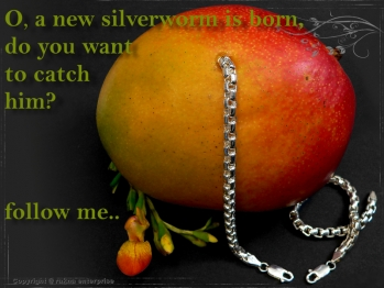 Silberkette Armband Venezia Ru B5.3L22 massiv 925 Sterling Silber